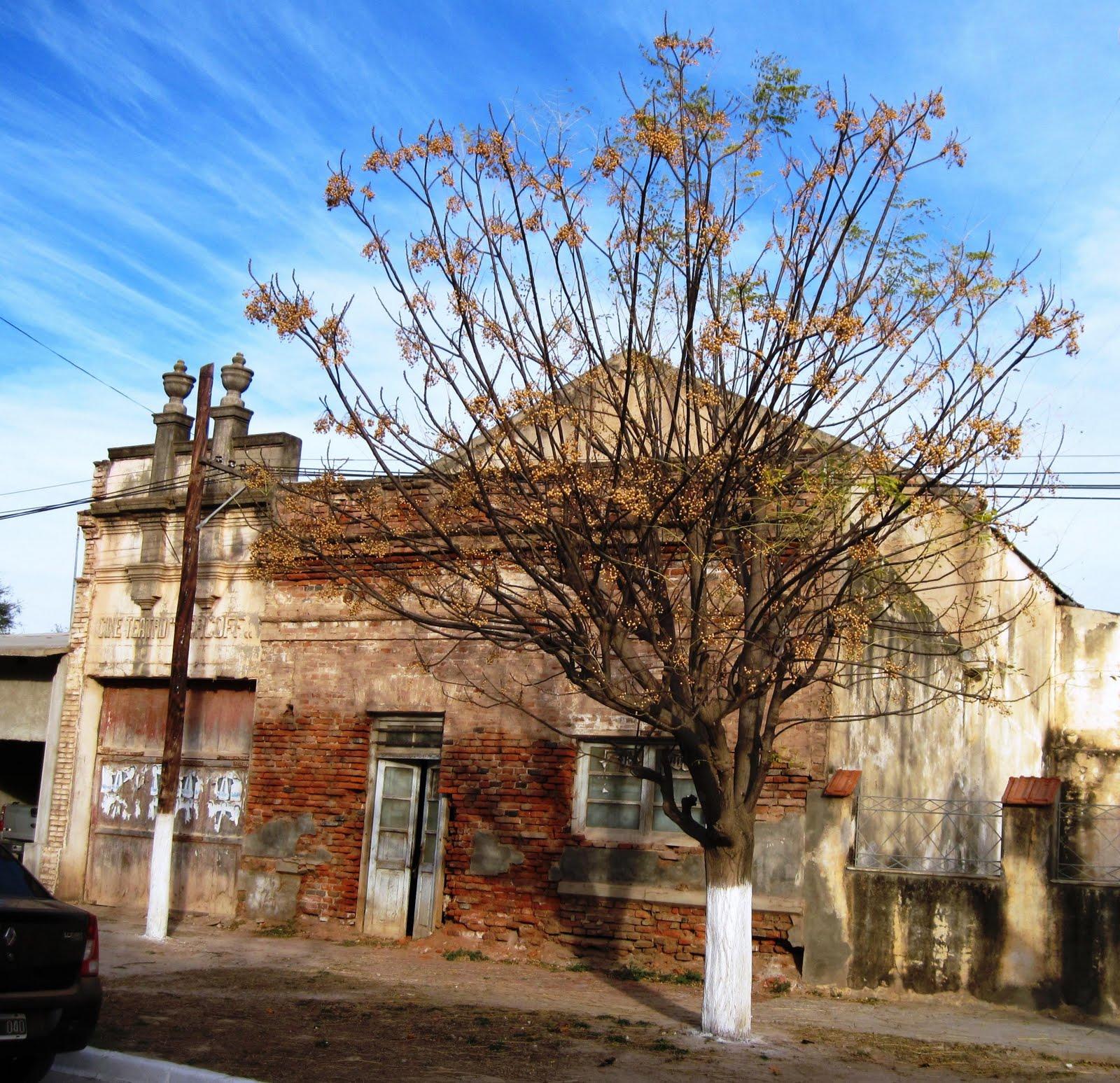 Catamarca-Argentina-35