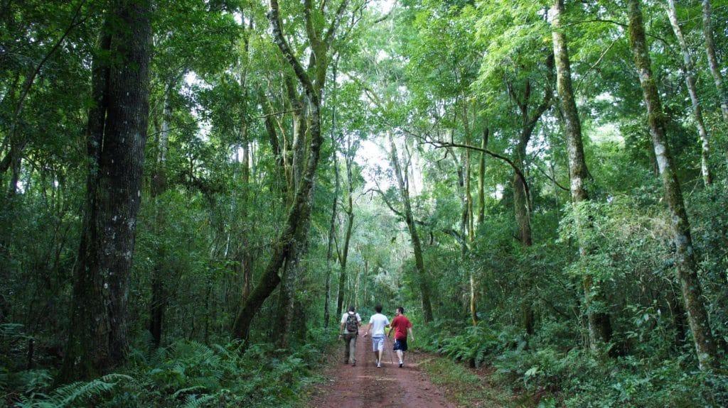 Puerto-Iguazu-11