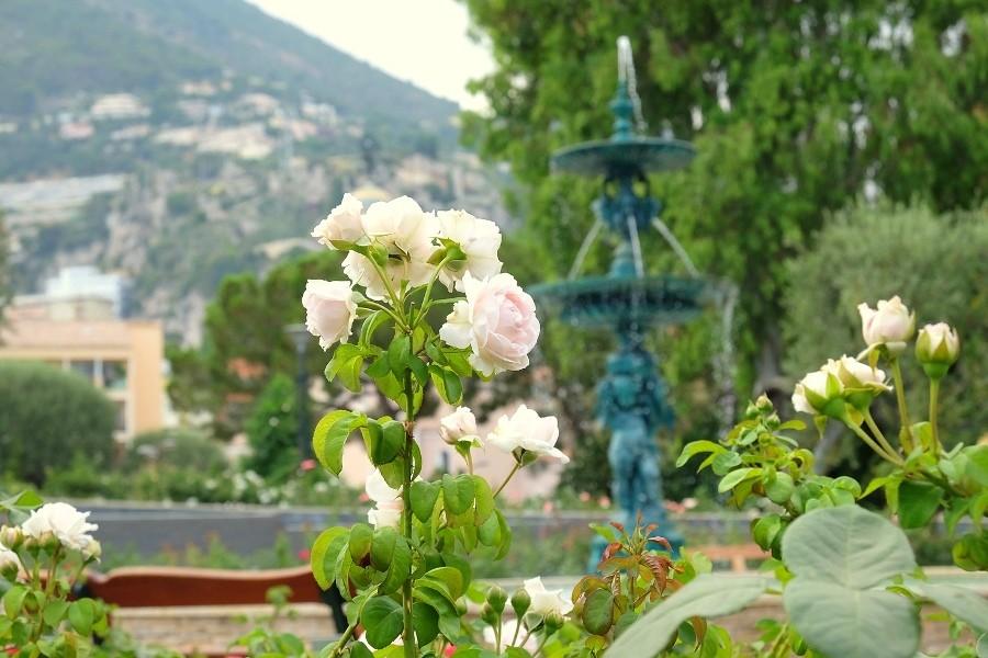 rosario y mas