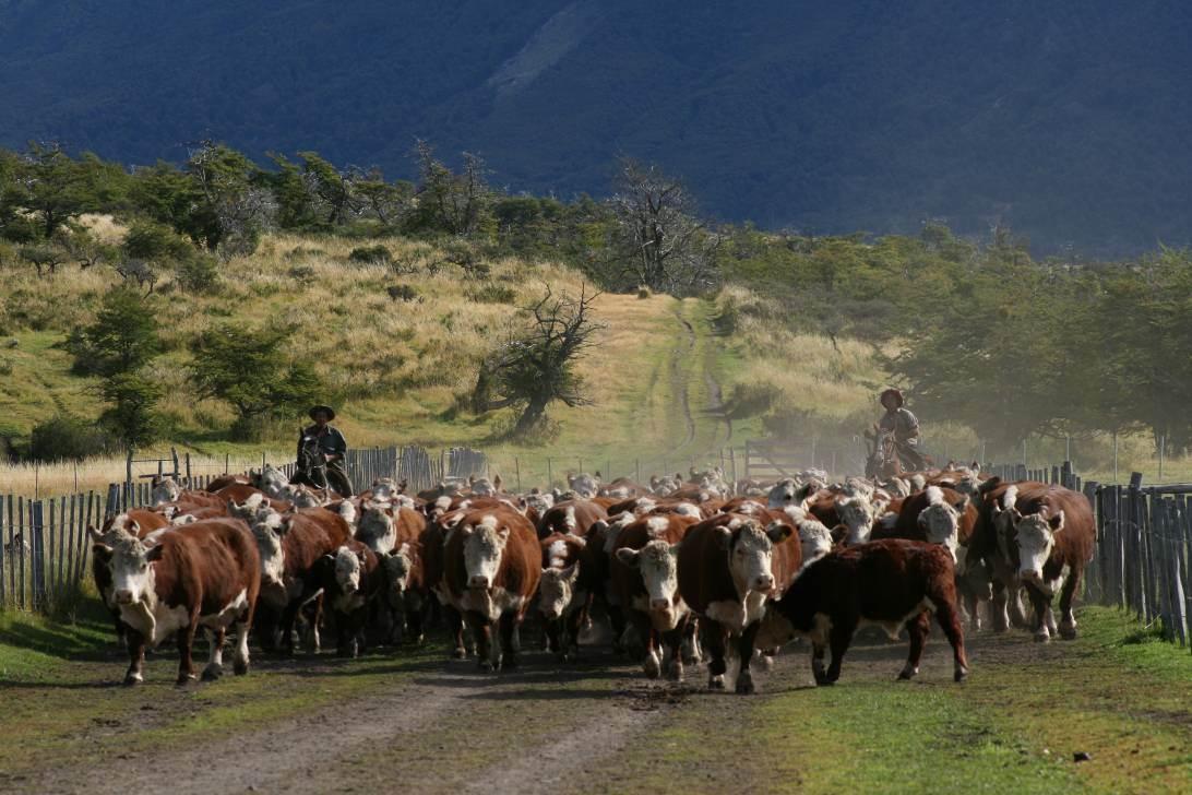 Patagonia-Argentina-34