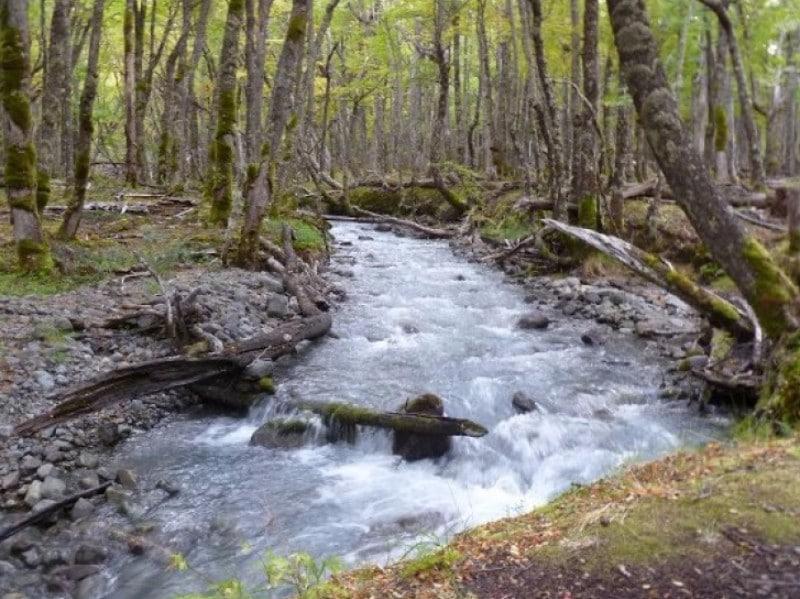 El Chalten Argentina rios