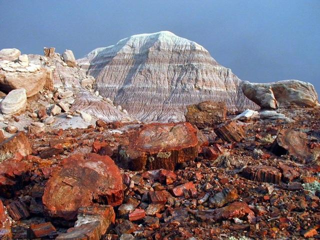 Parque Nacional Los Glaciares Bosques